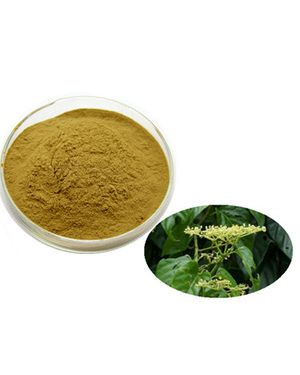 Image result for hadjod powder pic