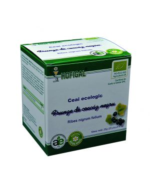 ORGANIC BLACKCURRANT TEA - 25 Sachets - 1.0g each/box