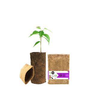 Coir Pouches - Gift Pack - Pack Of 6